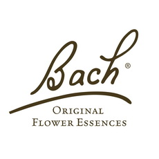 Bach handtekenig vierkant wit_kl